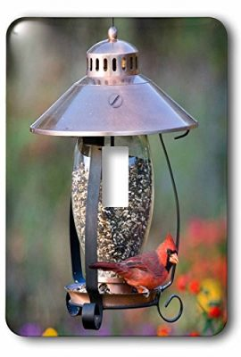 3dRose-lsp2086431-Northern-Cardinal-on-Copper-Lantern-Hopper-Bird-Feeder-Marion-Co-Il-Single-Toggle-Switch-0