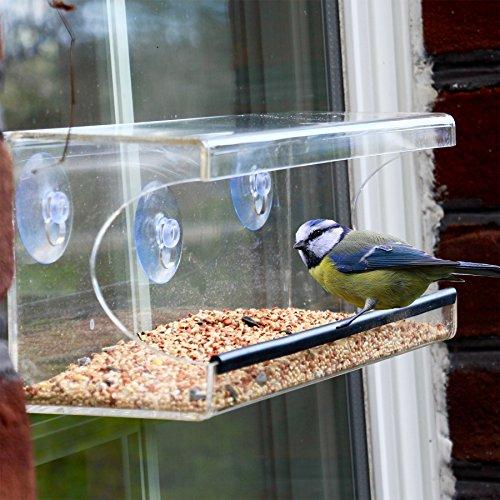Large Window Bird Feeder Clear See Through Feeder