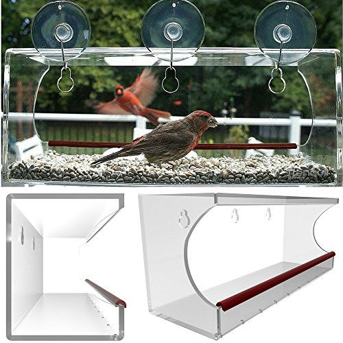 Large window bird feeder clear window mount see through for Best value windows