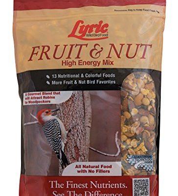 Lyric-Fruit-Nut-High-Energy-Wild-Bird-Mix-0