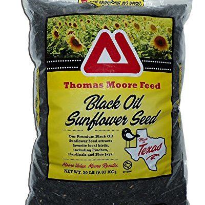 TMF-Premium-Black-Oil-Sunflower-Bird-Seed-0