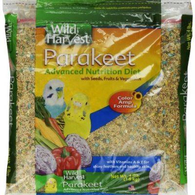 Wild-Harvest-Parakeet-Advanced-Nutrition-Diet-4-Pound-Bag-A1937-0