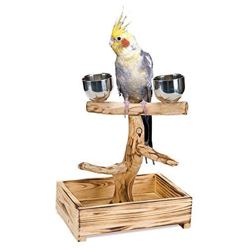 16-Inch Penn Plax Long Wooden Bird Perch